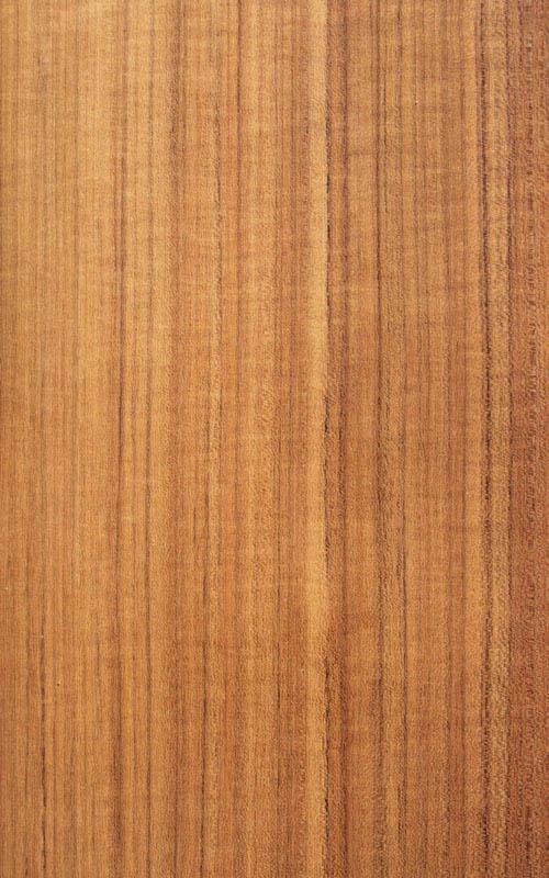 Essence de bois teck exotique essarbois for Placage de bois exotique