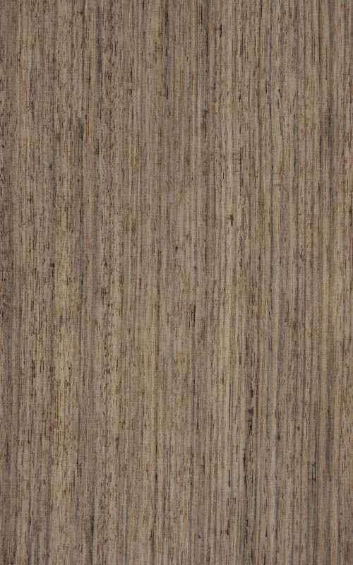 Essence de bois tropical oliver exotique essarbois for Essences de bois exotiques